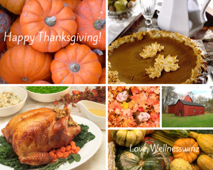 Happy ThanksgivingLove, Wellnesswinz
